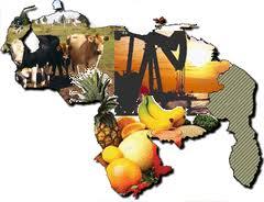 Análisis de la Economía de Venezuela